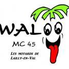walooMC45.jpg