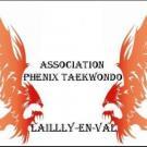 phenix-taekwondo.jpg